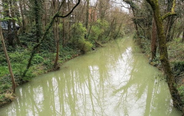 ecologie urbaine réhabilitation rivière reméandrement directive cadre sur l'eau restauration de rivière
